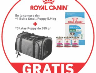 Royal Canin 1 Small Puppy 5.9 kg + 3 latas Puppy 385 gr