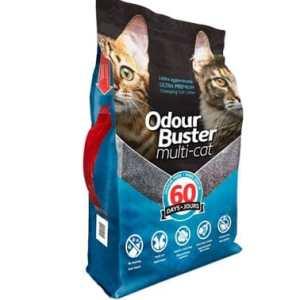 mejor arena para gato