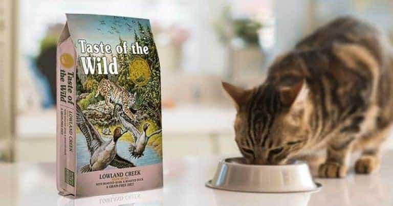 taste of the wild gatos