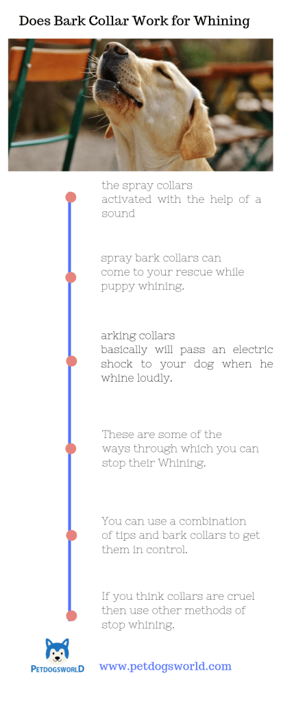 bark collars for Whining