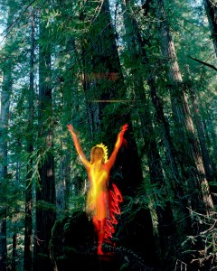 Pete Eckert's photo of a spirit-like figure dancing in a realistic forest