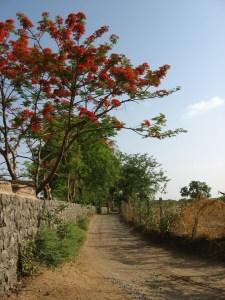ruralroad