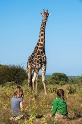 Two children sit on the ground close to a giraffe. Photo by travel photographer and conservation photographer Pete Oxford.