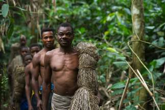 Ba'Kola Pygmys are shown with a hunting net walking through the forest. Photo by indigenous person and conservation photographer Pete Oxford.