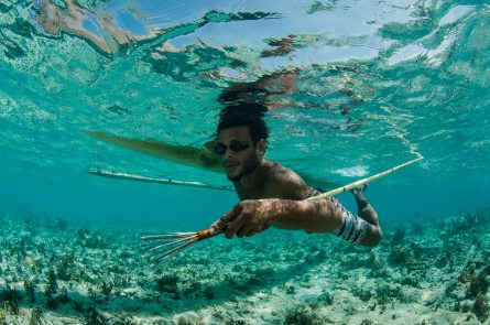 A local native Papuan fisherman floats underwater with a spear used for catching fish. Photo by conservation photographer Pete Oxford.