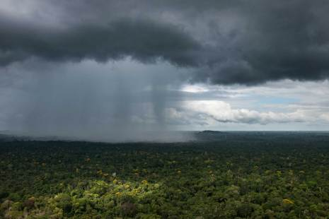 A rain storm downpours in the distance of the Essequibo River Region. Photograph by aerial photographer and conservation photographer Pete Oxford.