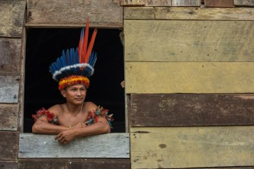 A man displays a Wai Wai headdress while leaning out of a window. Photo by indigenous person photographer Pete Oxford.