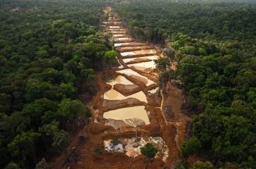 Alluvial gold mining is shown along the entire river bed in the Guyana rainforest. Photo by aerial photographer and conservation photographer Pete Oxford.