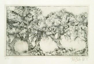 orchard 10.10