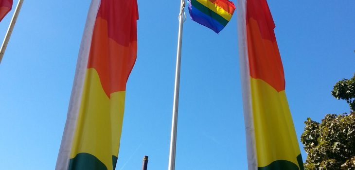 View of Pride flag at Peterborough City Hall