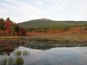 Community Events in the Monadnock Region of NH
