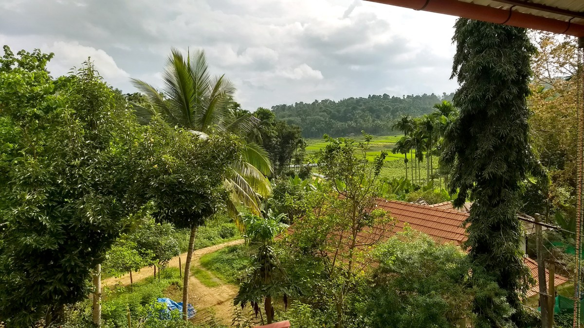 Plunging into Village Life in the Heartlands of Wayanad