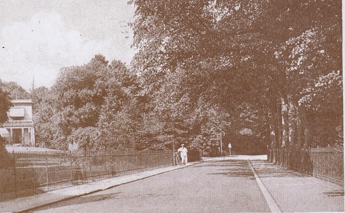 Hekken en Hagen in sepia in Overbeek te Bloemendaal