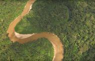 Google tar deg med til Amazonas
