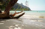 VING: Thailand frister i vinter