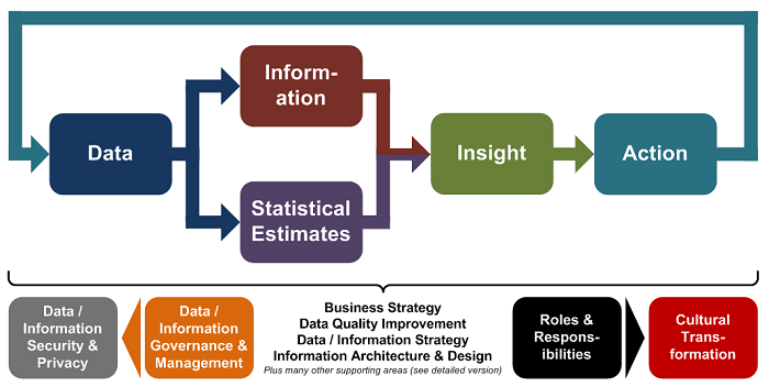 Data Information Insight Action (w700)