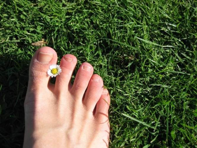 발, 발가락, 발톱