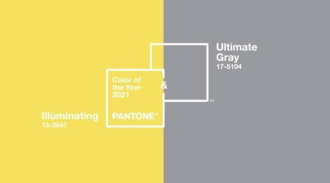 팬톤 올해의 색깔