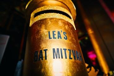 lea-bat-mitzvah-photographer-0018