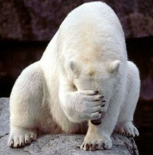 polar_bear_failure