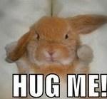 Hi Hug Me Comment Image   MyCommentSpace