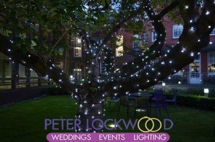 sunken garden tree with white fairy lights