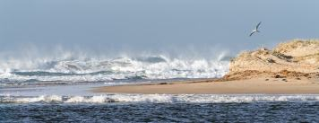 Murray Mouth Surf