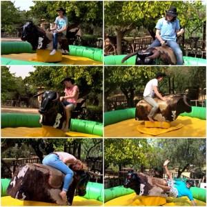 Rancho Grande rodeo!