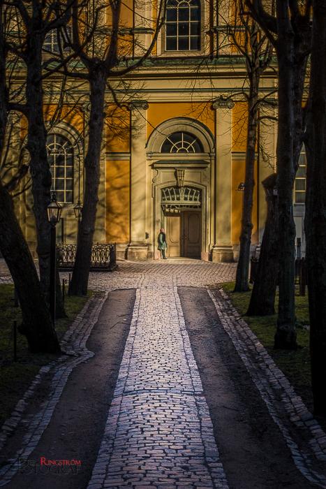 Fotograf Peter Ringström-FPR_4816