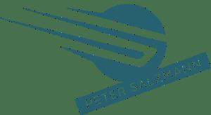 Peter Salzmann Logo