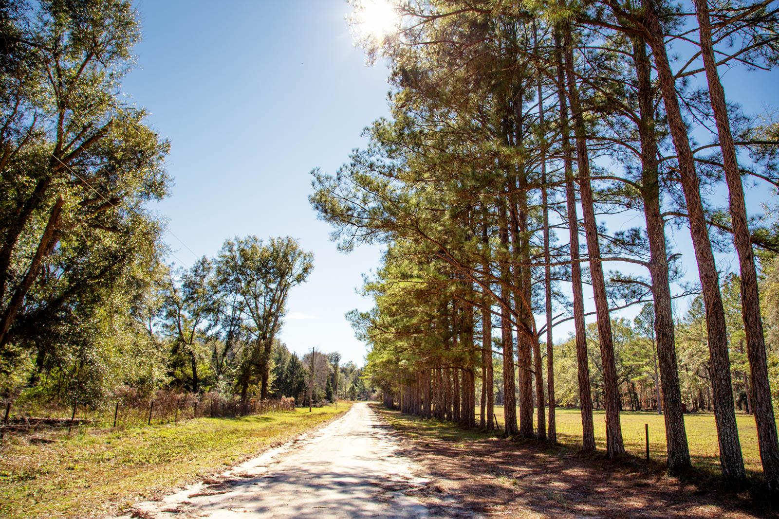 5 Acres in Live Oak, FL (Suwannee County)