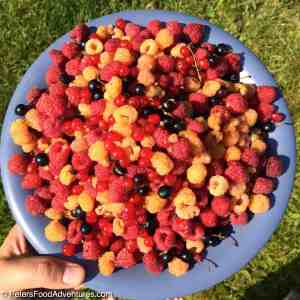 Russian Pancakes with Fresh Berries (Оладики)