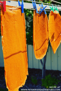 Sun Dried Fruit Leather hanging on a clothesline
