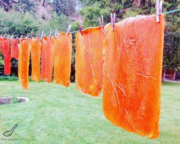 Tklapi Fruit Leather drying on a clothes line