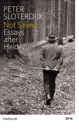 Not Saved: Essays After Heidegger - Peter Sloterdijk
