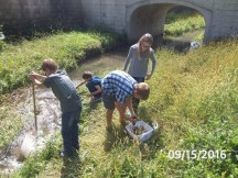 A group examines a fast moving part of the creek.