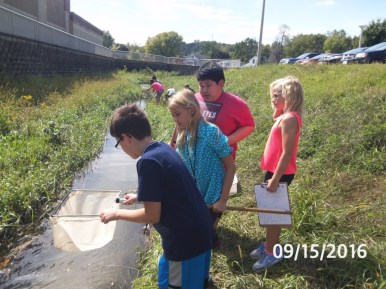 A group examines a slow moving part of the creek.