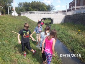 A group examines a slow running part of the creek.