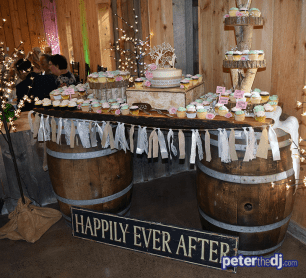 Dessert display with custom cake topper at Kimberly and Giovanni's wedding at Wolf Oak Acres in Oneida, NY, June 2018