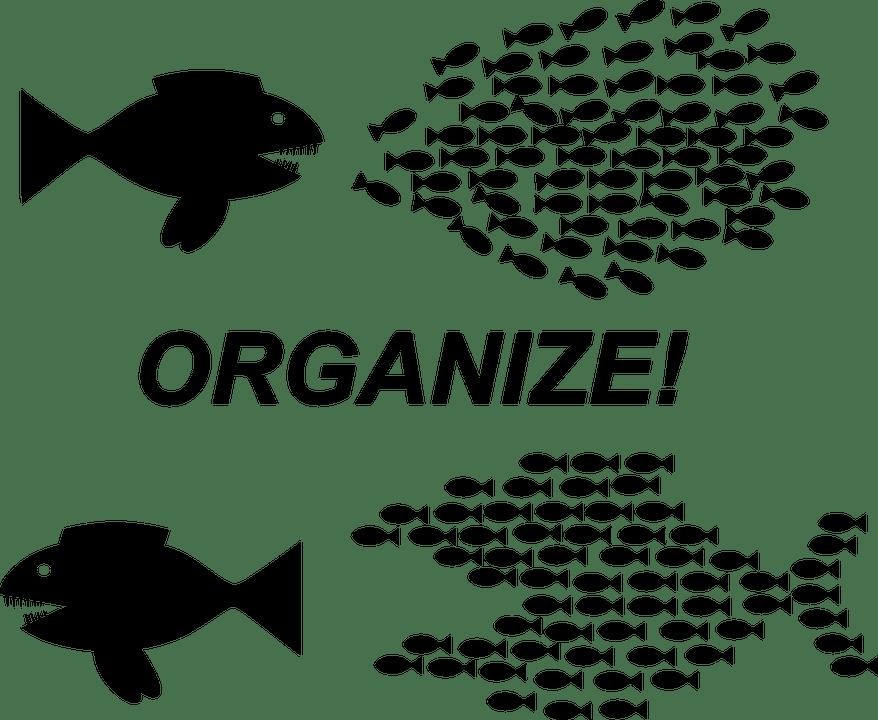 organization-152809_960_720