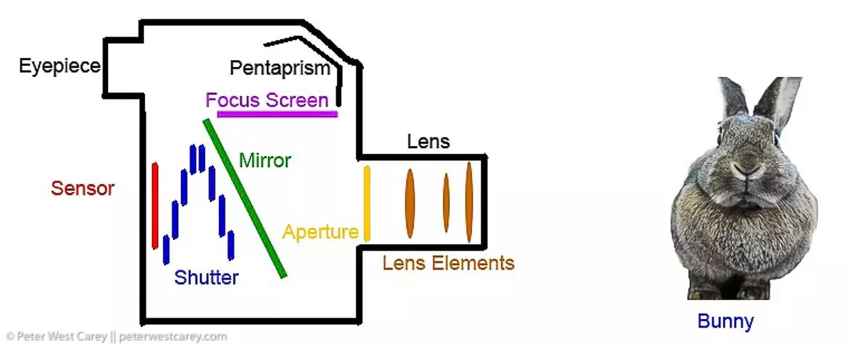 How Your Camera Works 21?resize=740%2C304&ssl=1 how your camera works photography basics (with diagrams)