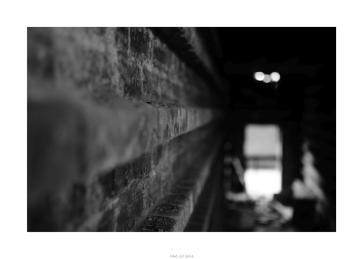 Nikon D90_28873__DSC0140-border