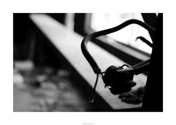 Nikon D90_28916__DSC0183-border