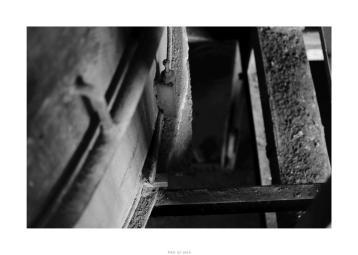 Nikon D90_28923__DSC0190-border