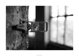 Nikon D90_28975__DSC0244-border