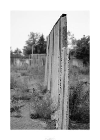 Nikon D90_29044__DSC0319-border