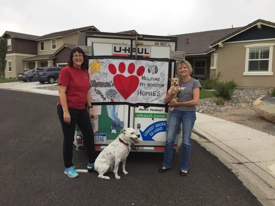 Pet Supplies for Hurricane Harvey Relief