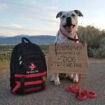 Pet Evacuation Pack