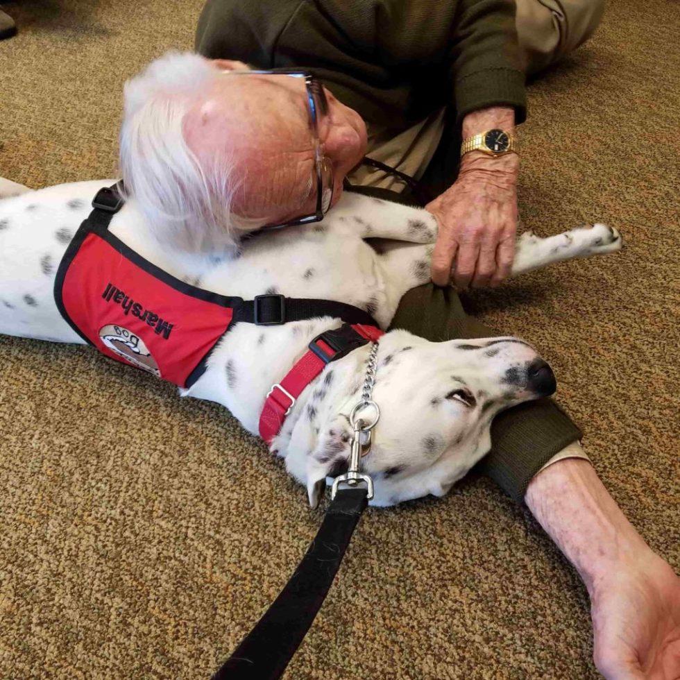 Therapy Dog Marshall at Senior Home