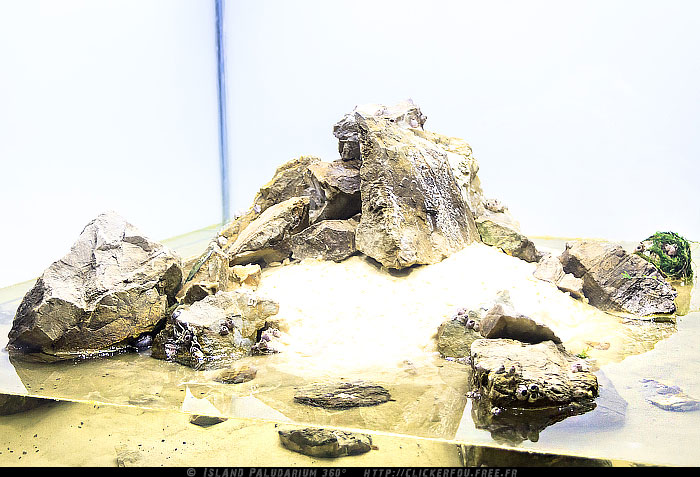 rocks and substrate going above water line